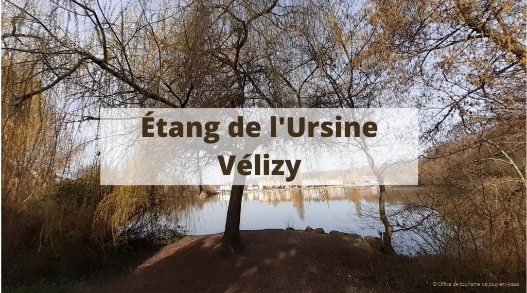 Étang de l'Ursine à Vélizy