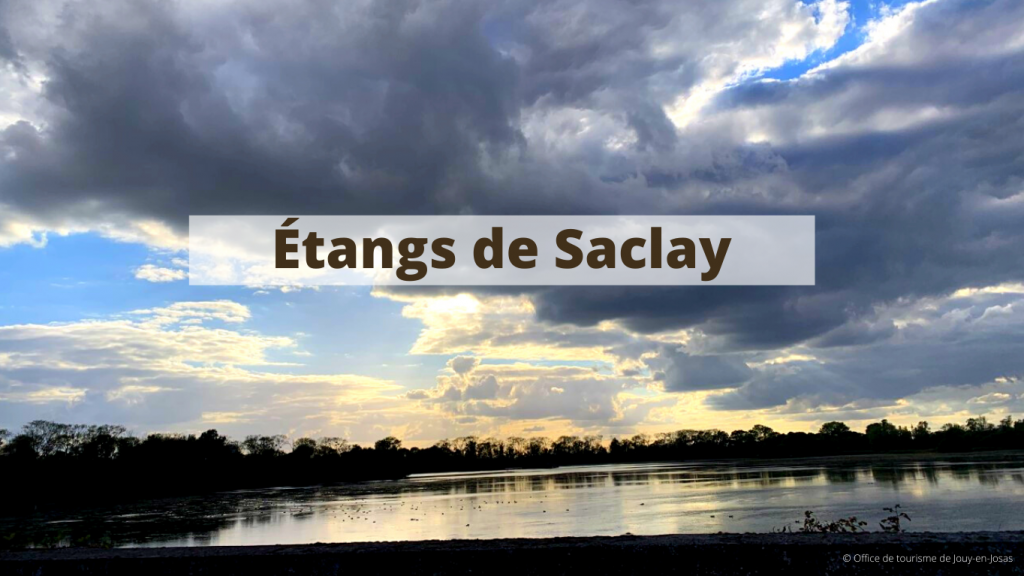 Étangs de Saclay